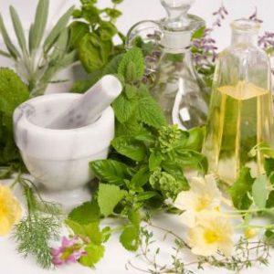 bitki kimyasalları