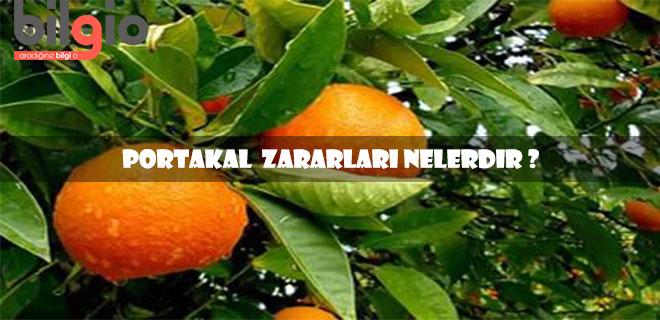 portakal-zararları